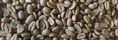 Rohkaffee Kolumbien Gesha