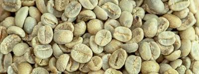 Rohkaffee Brasilien Bio