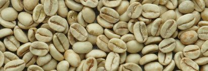 Rohkaffee Monsooned Malabar