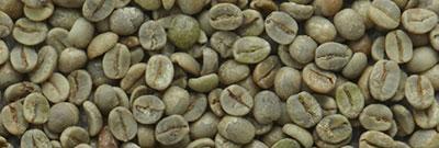 Rohkaffee Brasilien Santos
